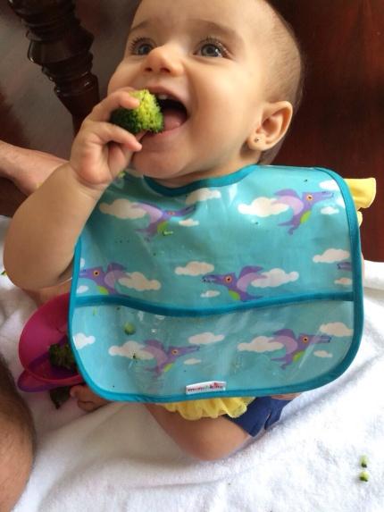 blw, pediatria descomplicada, dra kelly oliveira, baby led weaning
